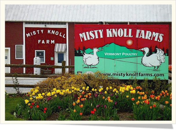 Misty Knoll Farms, free sample!